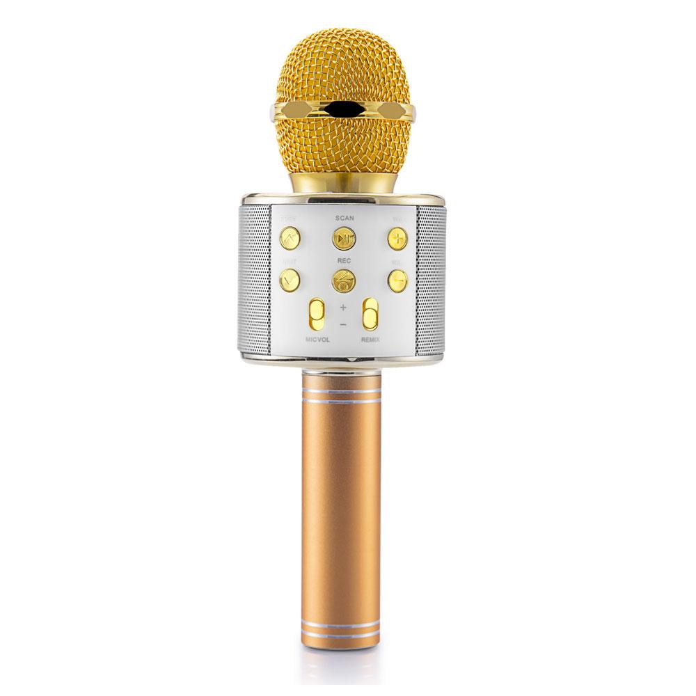 Star 2018 Karaoke Mikrofon